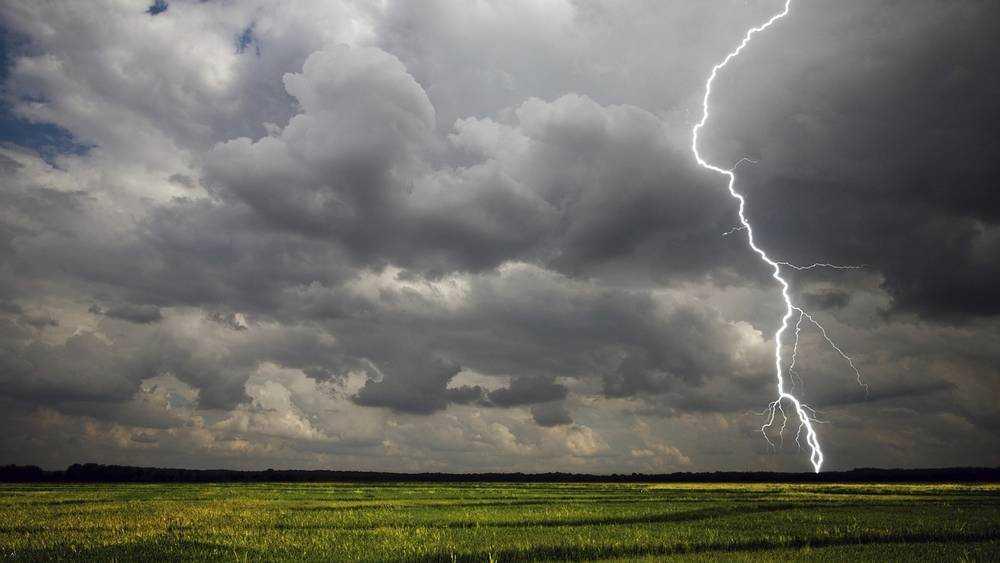 На Брянщину 25 августа обрушатся дожди с грозами и сильный ветер