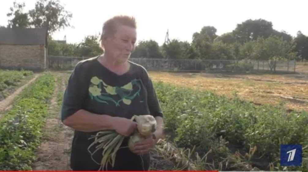 Первый канал рассказал о вырастившей огромный лук жительнице Брянска