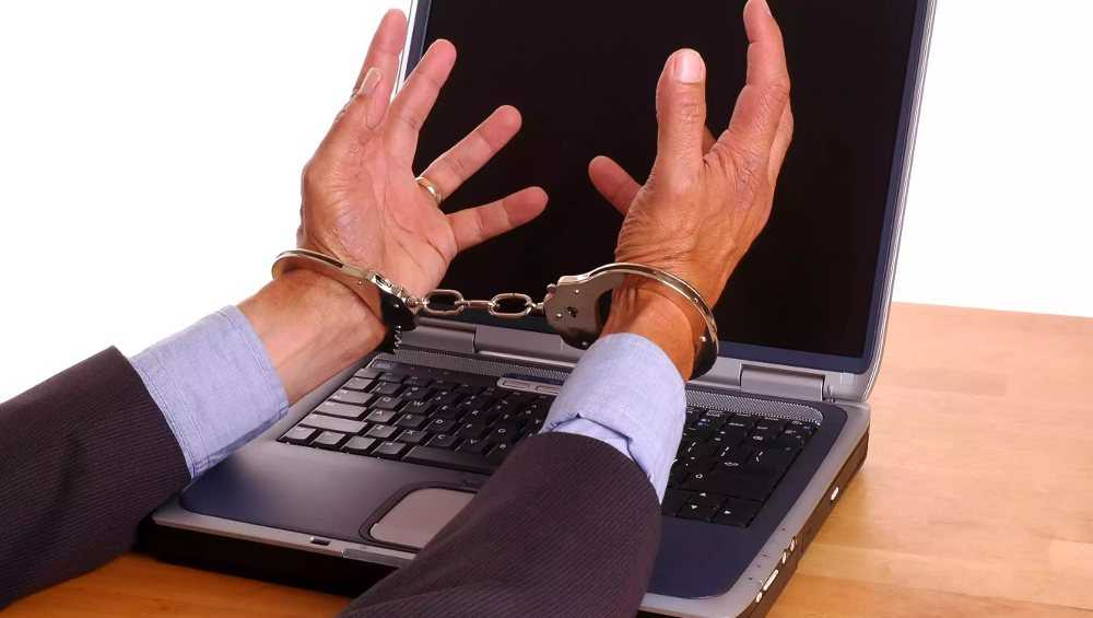 Брянские полицейские поймали одного из сетевых мошенников
