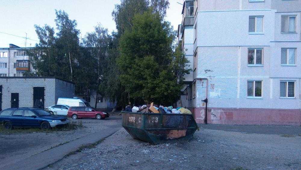 Брянск сравнили со средневековой Европой из-за баков с ТБО под окнами