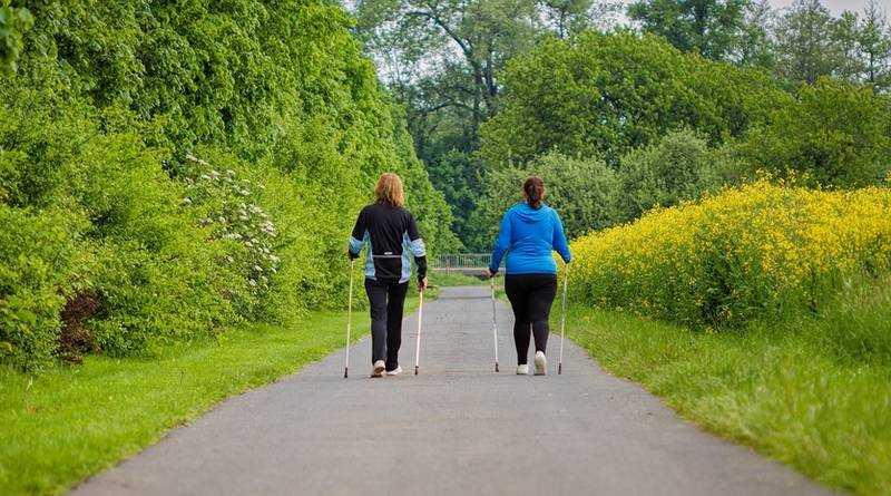 В Брянске пройдут соревнования любителей скандинавской ходьбы