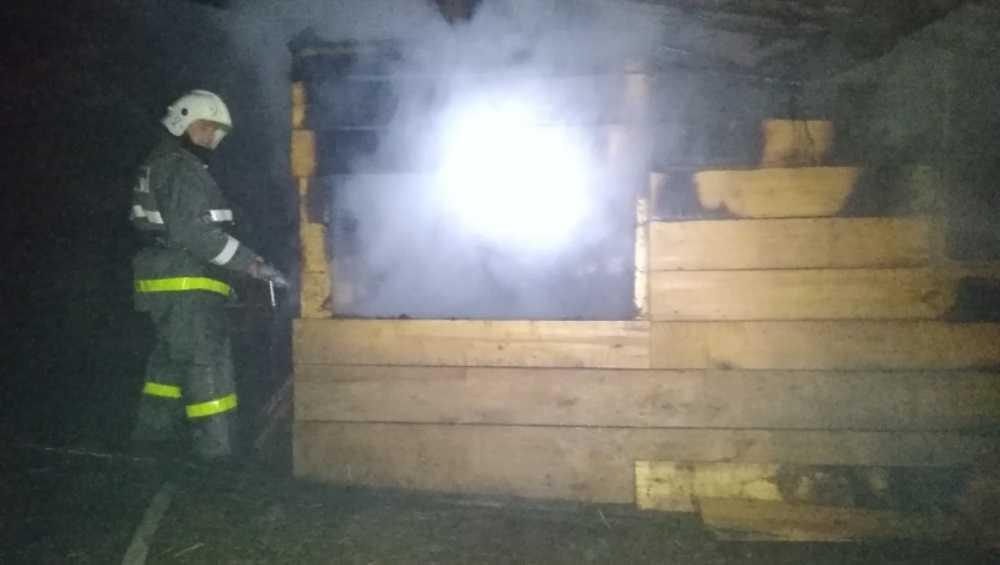 В Почепском районе Брянской области при пожаре погиб мужчина