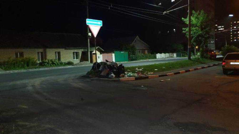 Жителей Брянска возмутила стихийная свалка на улице Фокина