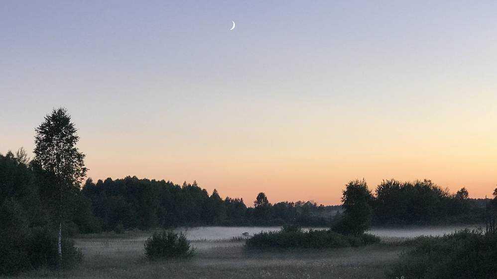 В первый день лета Брянской области пообещали туман и 20 градусов тепла