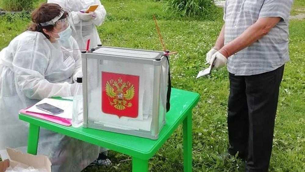 В Брянской области не нашли случаев «голосования на пеньках»