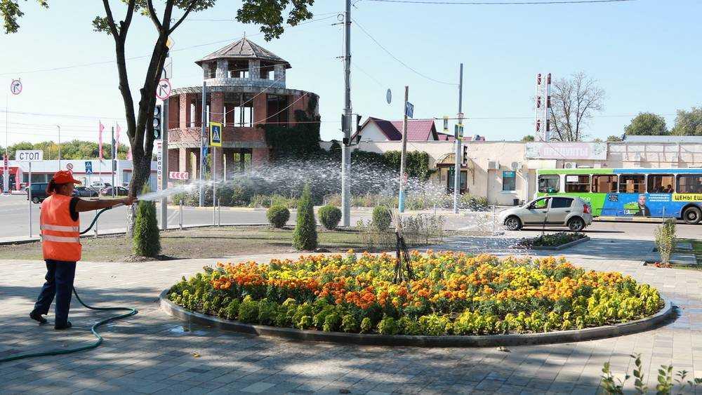 В сквере возле вокзала Брянск-I посадили 25 деревьев