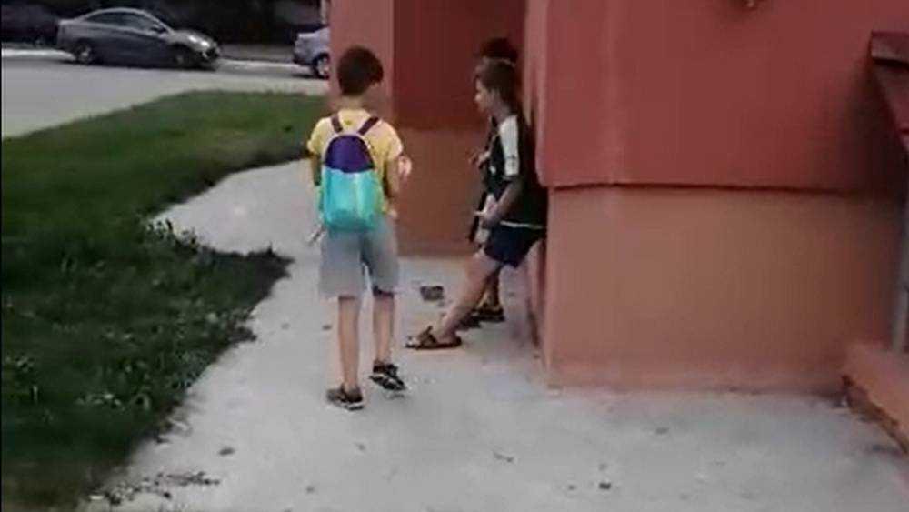 Брянские дети увлеклись кирпичными обстрелами