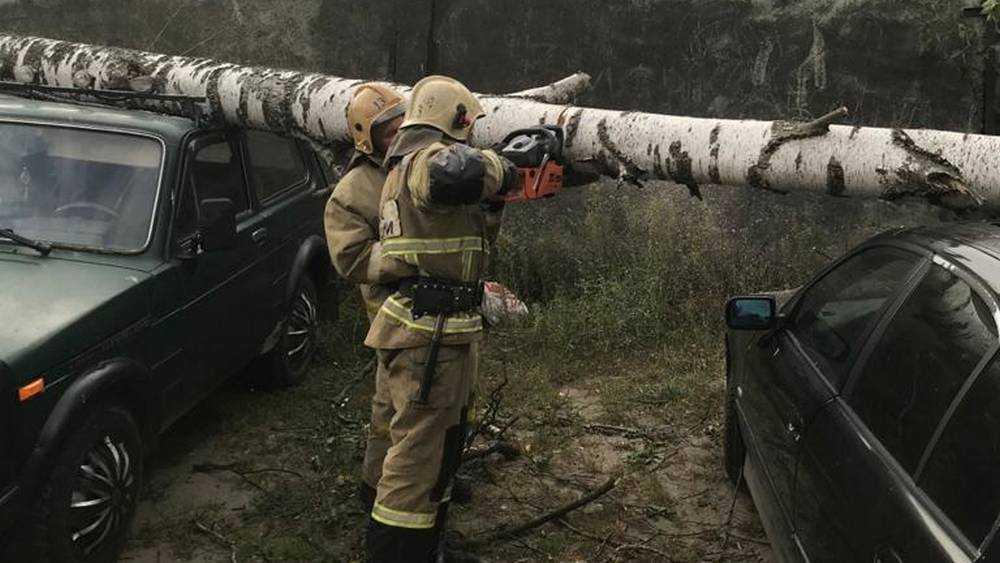 Ураганный ветер натворил немало бед в Брянской области
