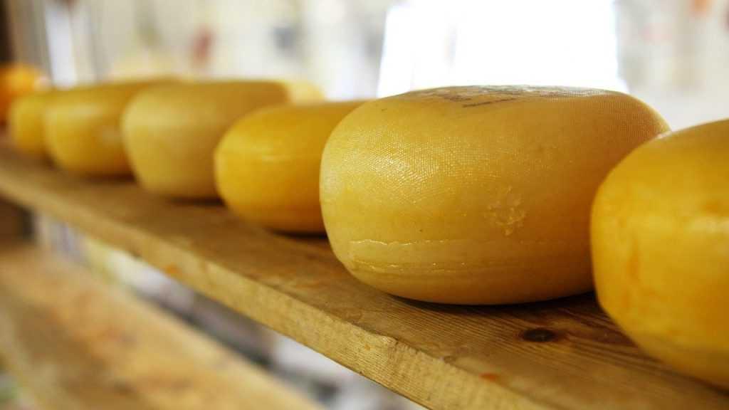 В Брянске в декабре пройдёт ярмарка сыра