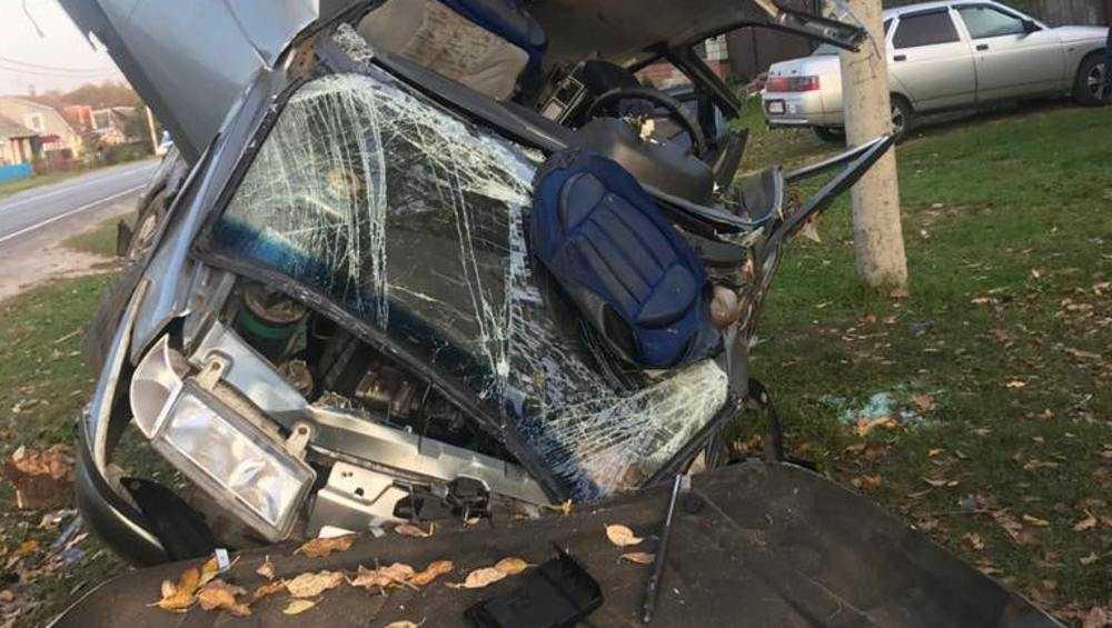 В брянском Ивоте пьяный автомобилист наехал на дерево