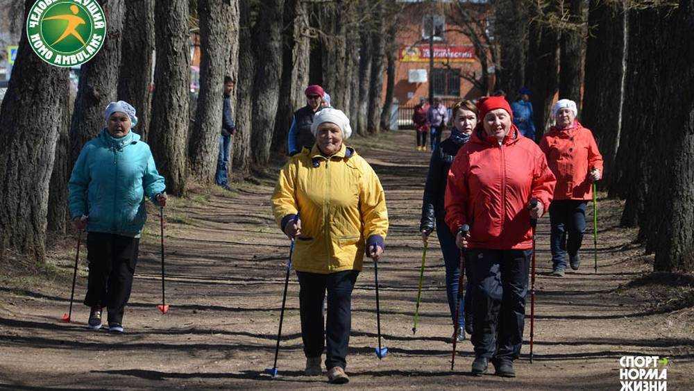 В Брянске пройдут соревнования «Человек идущий»