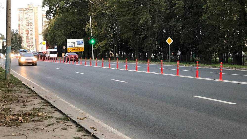 Брянские водители не смогли разгадать тайну столбиков возле «Линии»
