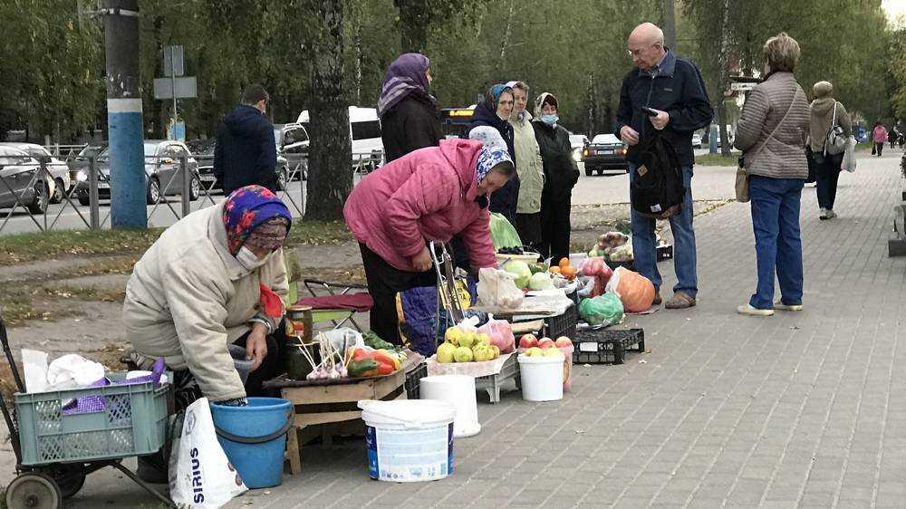 Брянские бизнес-огородники вышли на передовую торгового фронта