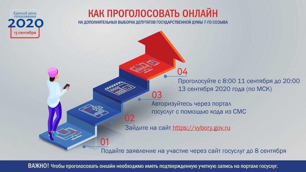 Дистанционное голосование в Курской и Ярославской областях: инструкция для избирателей