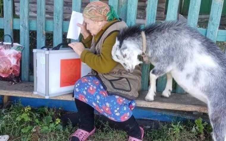 Памфилова рассказала о брянском пне для голосования
