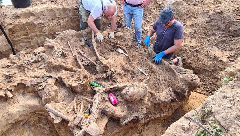 Под Почепом поисковики нашли останки 12 советских солдат