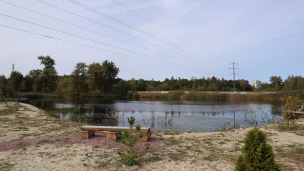 Прокуратура обратила внимание наотравленный пруд в Брянске