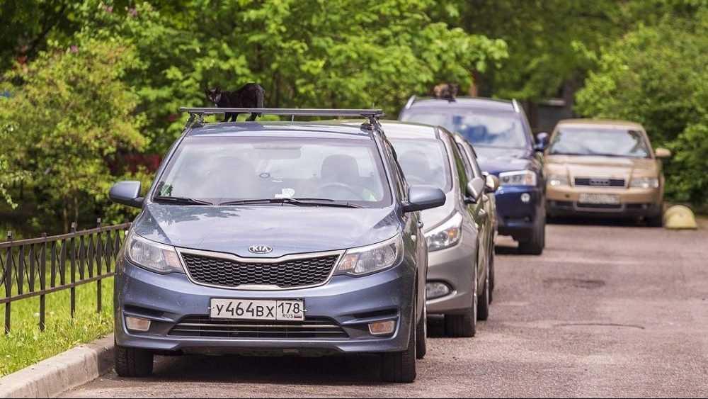 Аренда автомобиля в Санкт-Петербурге: причины популярности услуги