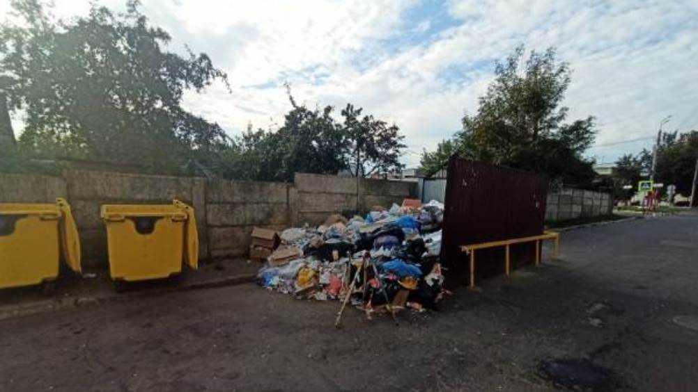 Жителей Брянска возмутила стихийная свалка возле ТРЦ «Мельница»