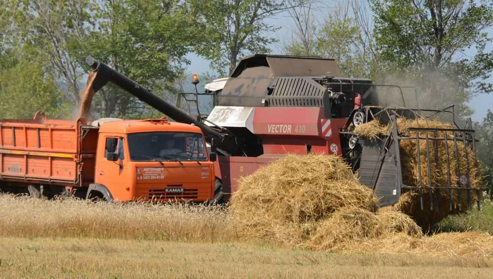 В Брянской области во время уборки урожая полиция выявила 6 краж
