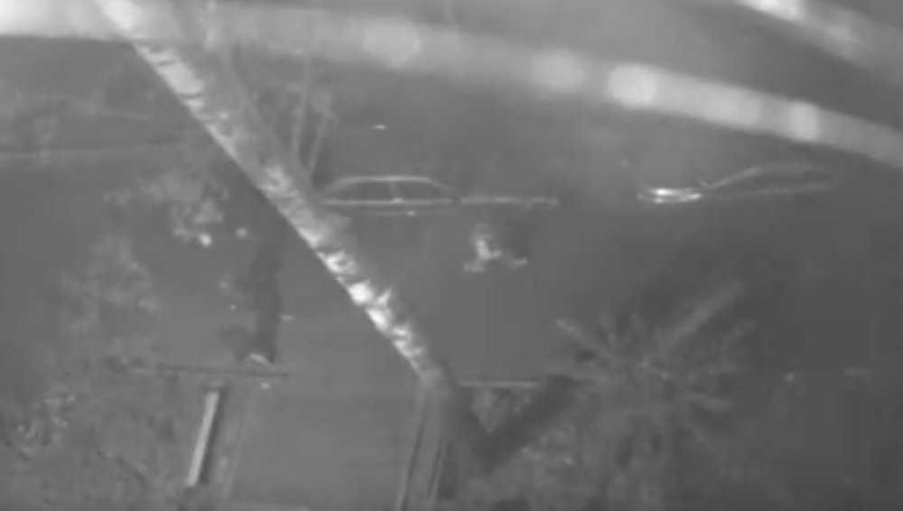 В Брянске уличные хулиганы мимоходом разбили зеркало автомобиля