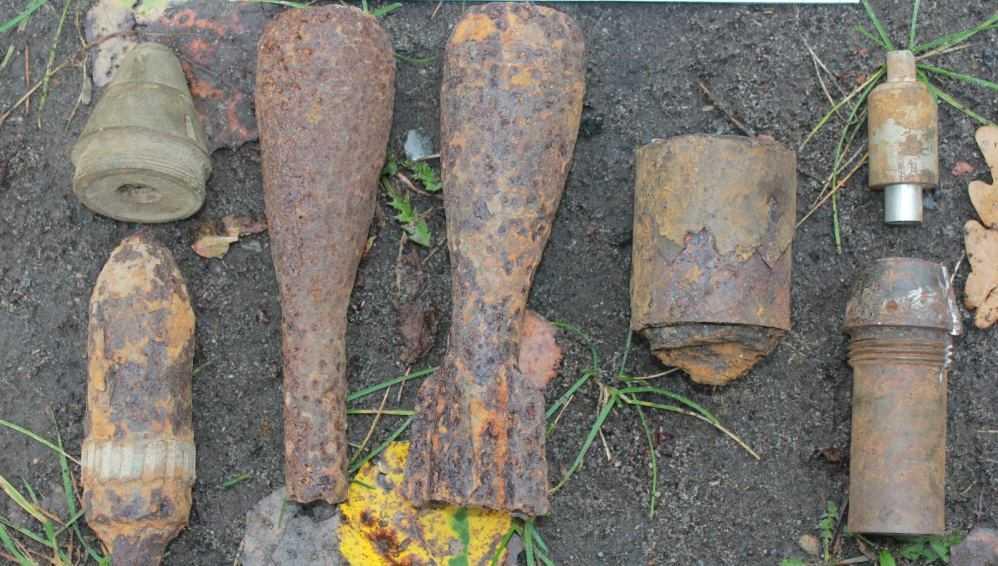 Под Жуковкой росгвардейцы обезвредили боеприпасы времён войны