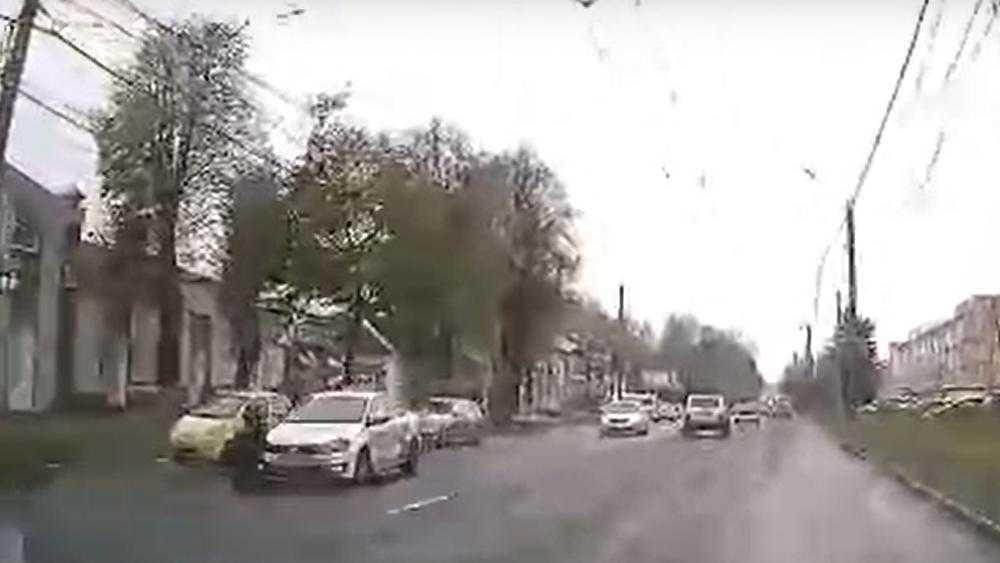 В Брянске на Красноармейской улице животное попало под машину