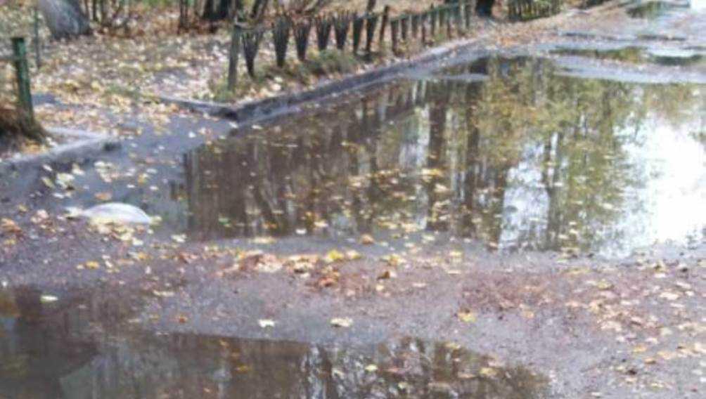 Жителей Брянска разозлила разбитая дорога на улице Бузинова