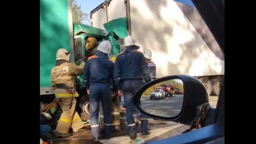 Под Брянском сняли видео с места столкновения двух грузовиков