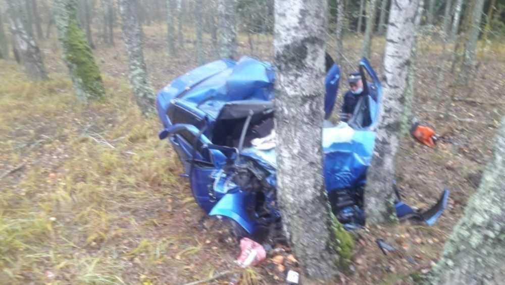 Под Климовом погиб водитель врезавшейся в дерево легковушки
