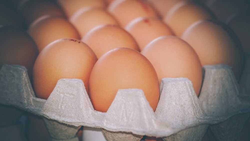 На Брянщине зафиксировали самый высокий в России рост цен на яйца
