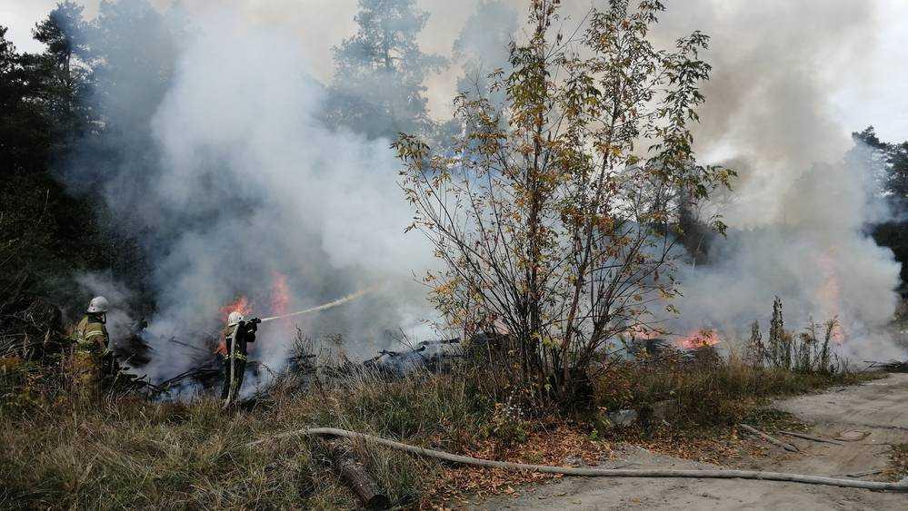 В Володарском районе Брянска возле леса подожгли крупную свалку