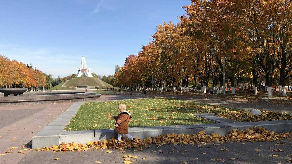 Брянской области 13 октября пообещали 21-градусное тепло