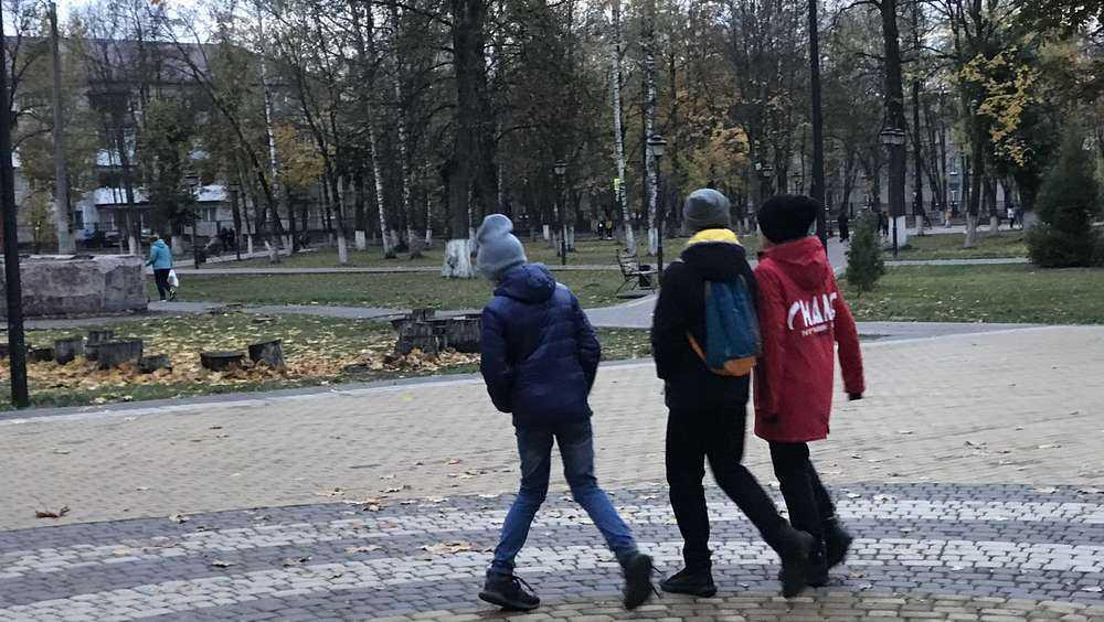 В брянском парке железнодорожников сделают две спортплощадки