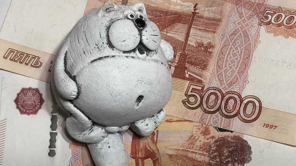 Брянская область в феврале полностью выплатила коммерческие кредиты