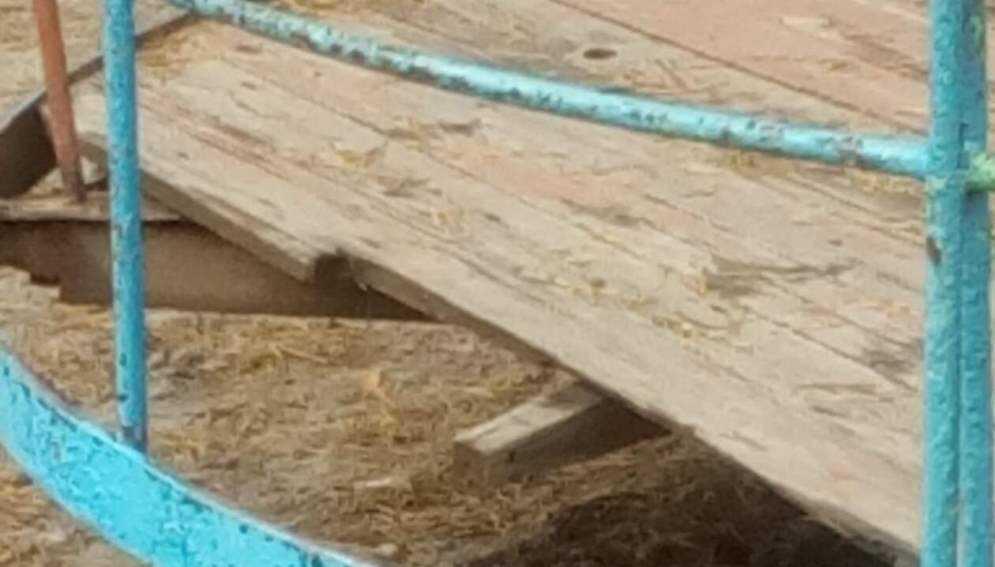 Жительница города Сельцо пожаловалась на опасные карусели