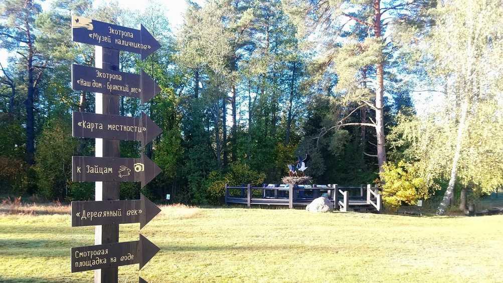 В заповеднике «Брянский лес» появились указатели для туристов