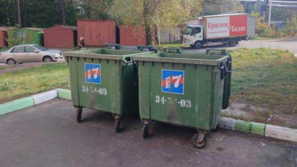 В Брянске убрали свалку возле детского реабилитационного центра