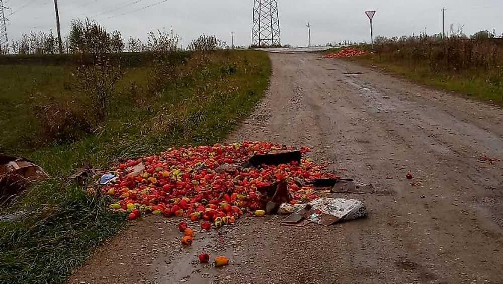 Жительницу Брянска возмутили кучи выброшенного перца
