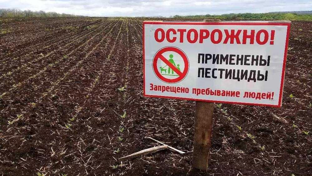В Брянской области выявили 12 случаев незаконного применения пестицидов