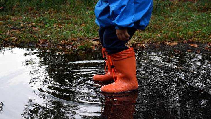 В Брянской области пройдут дожди и похолодает до нуля градусов