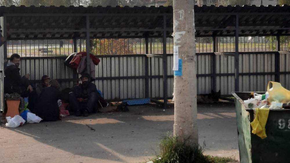 В Брянске мусорная площадка стала домом для бомжей