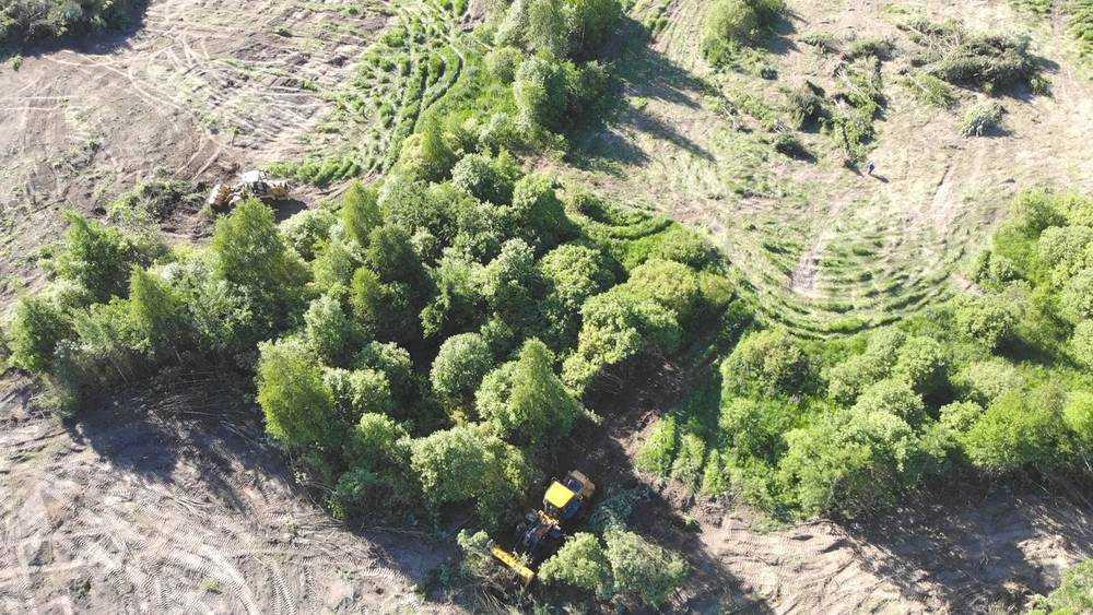 Брянский губернатор приказал найти владельцев заброшенных земель