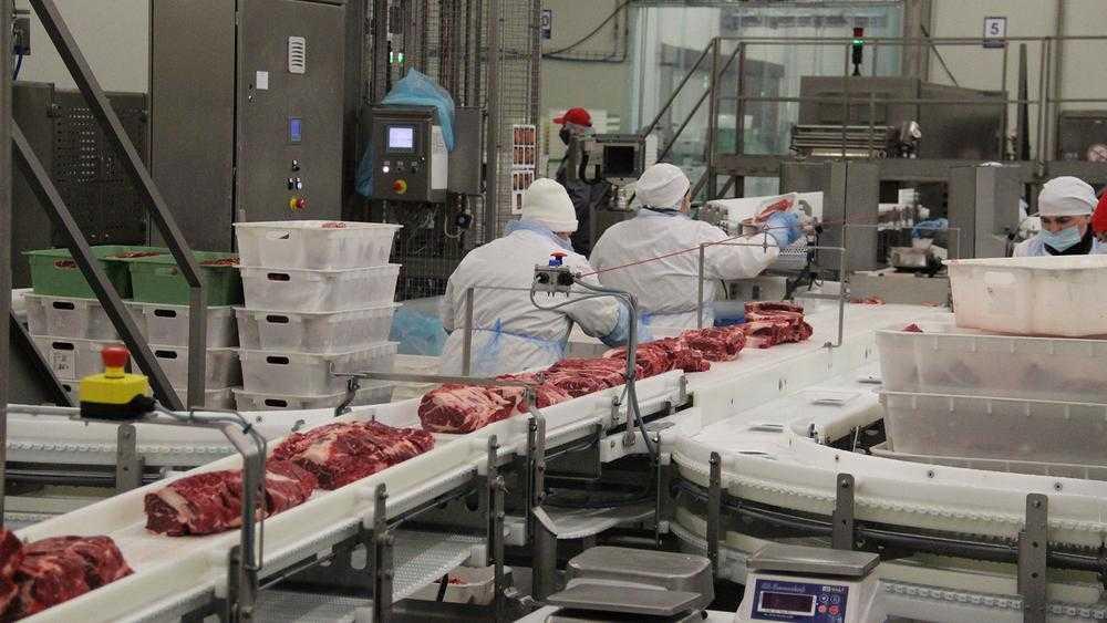 Выяснилось, почему послов Японии и ОАЭ заинтересовало брянское мясо
