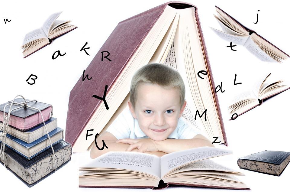 В Брянске 23 ноября примут решение о дистанционном обучении 5-11 классов
