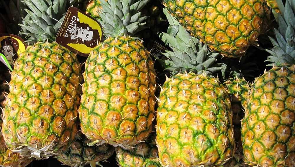 Брянская стража вернула 20 тонн ананасов на украинскую территорию