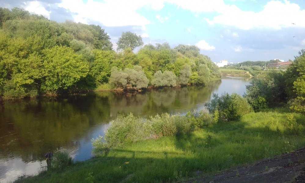 В Бежицком районе Брянска продолжили расчистку русла реки Десны