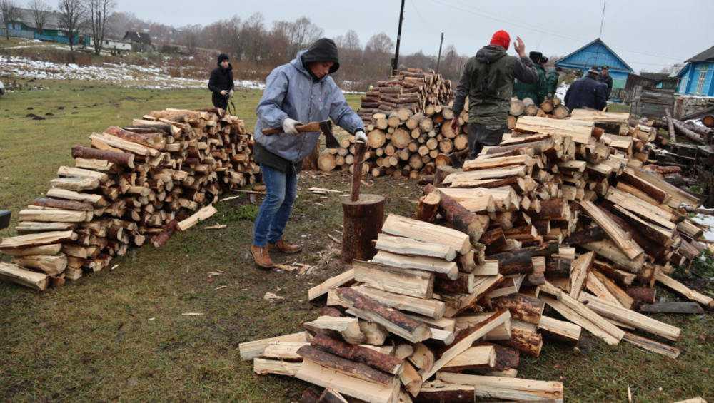 Брянские активисты заготовили дрова для сельской пенсионерки