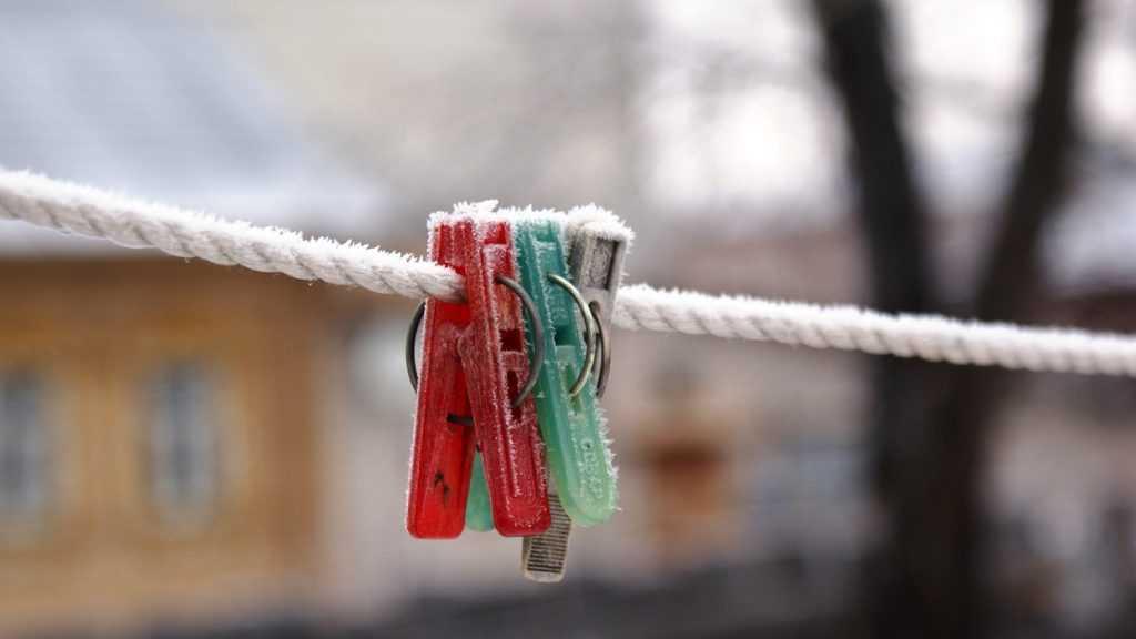 Брянской области 12 ноября пообещали туман и 5-градусный мороз
