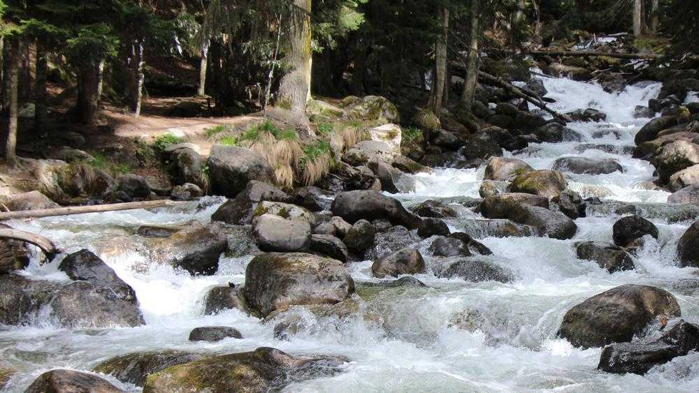Отрава с видом на горы: как обманывают брянцев поставщики воды